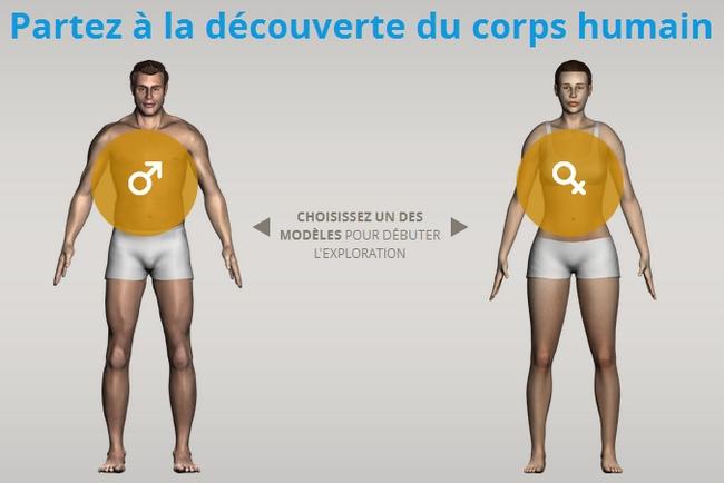 corpus3D